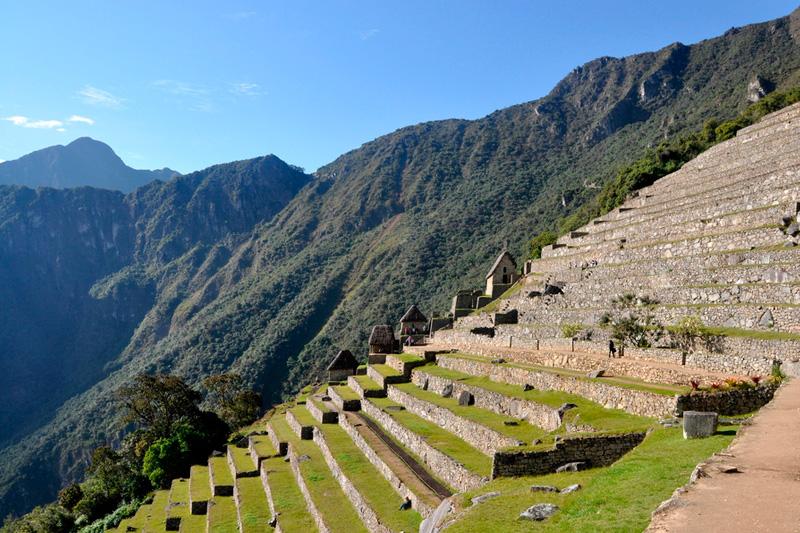 Andenes sector bajo Machu Picchu