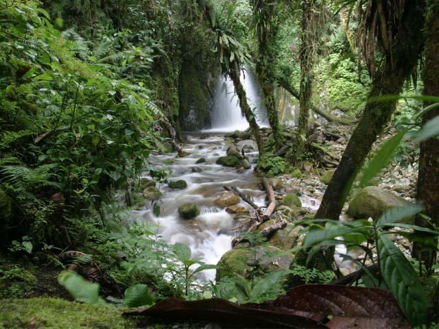 Cascada en Mandor