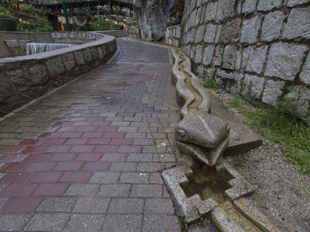 Canal serpenteante