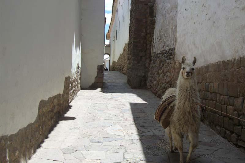 Calle Sieten Culebras