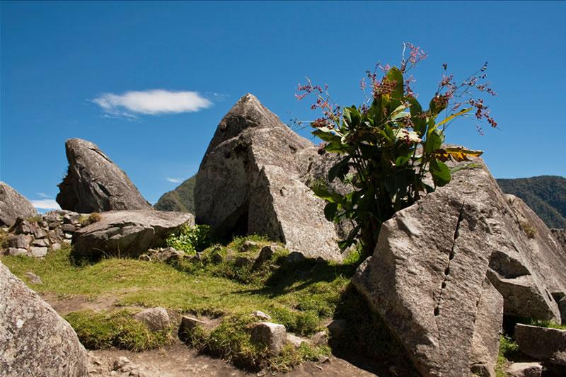 cantera en Machu Picchu
