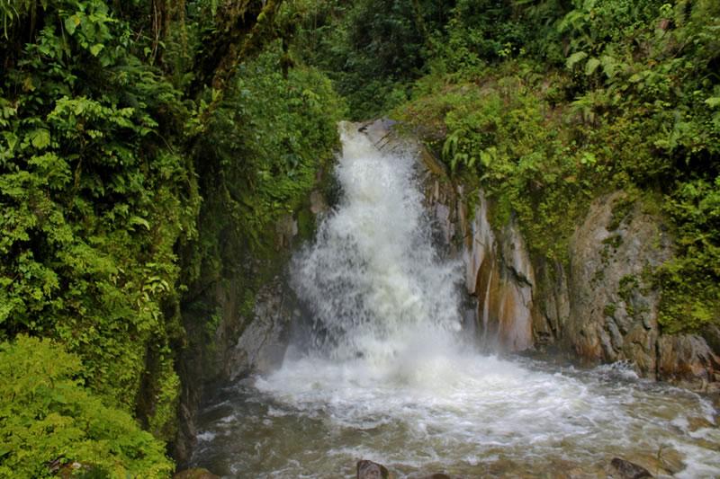 mandorpampa en Machu Picchu