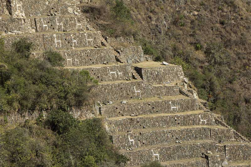 Figures of llamas on the platforms of Choquequirao