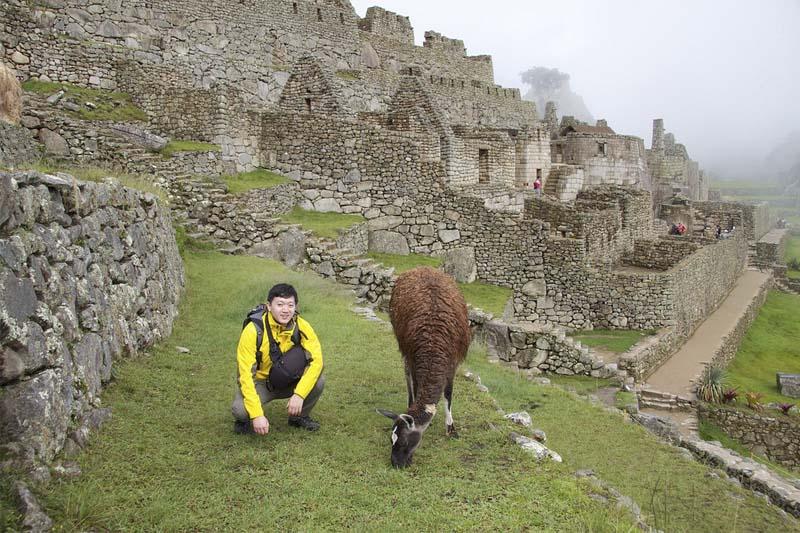 Machu Picchu en 2017
