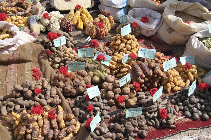 Organic Products- Pisac Market