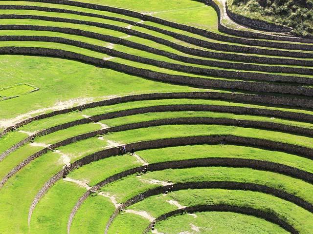 Detalle de las terrazas de Moray