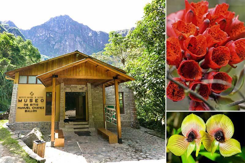 Museo y Jardin Botanico Machu Picchu