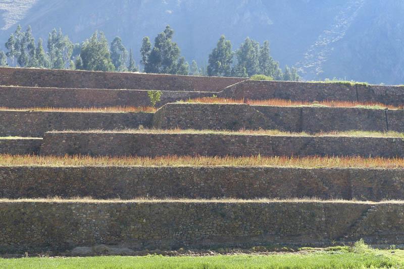 Terraços incas em Yucay