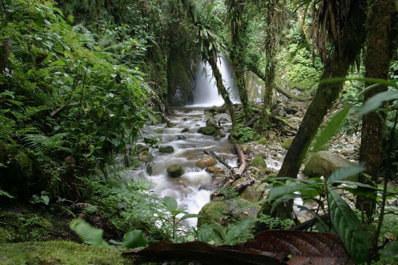 zona agraria Machu Picchu