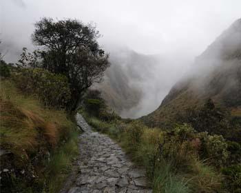 Camino Inca, ruta hacia la Ciudad Inca de Machu Picchu