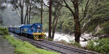 ¿Qué se necesita para llegar a Machu Picchu en tren?