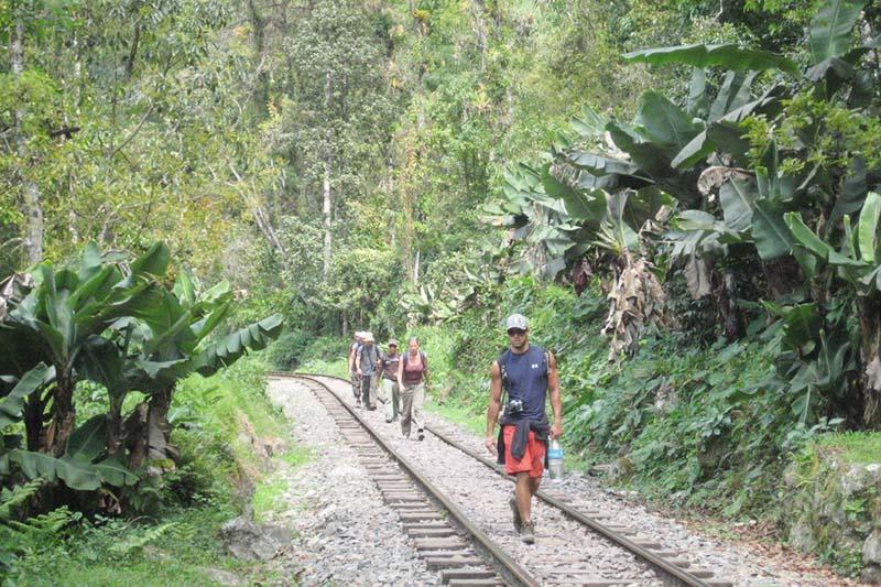 Hike to Machu Picchu by the Inca jungle trail