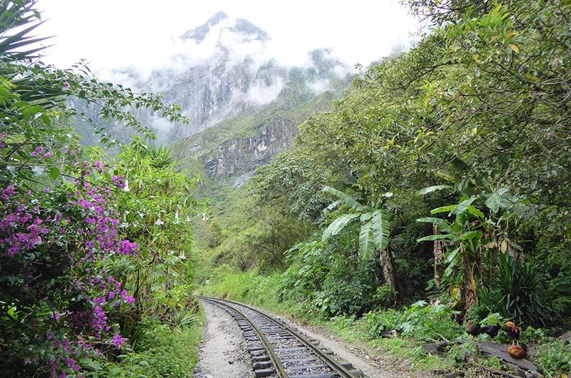 Paisaje de la ruta Santa Teresa hacia Machu Picchu