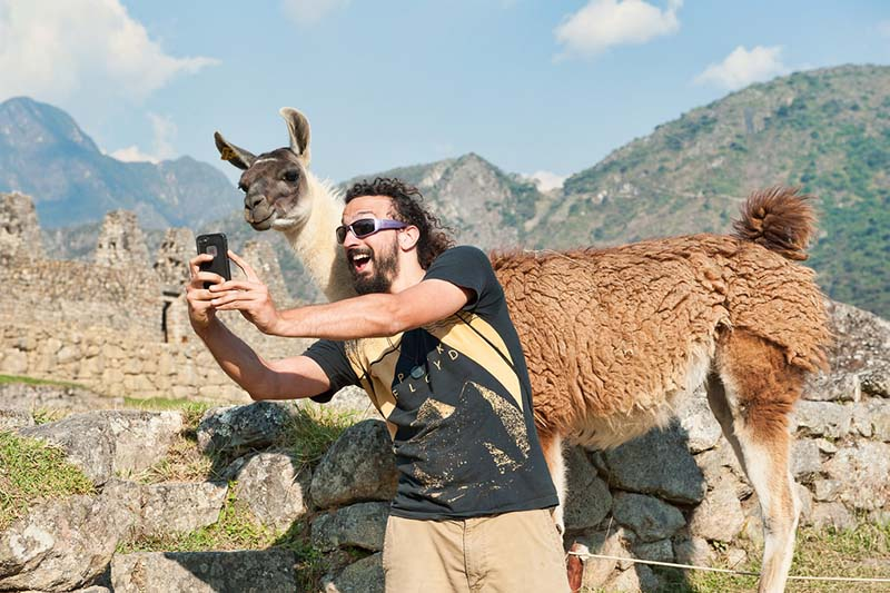 Tourist taking a selfie next to a llama