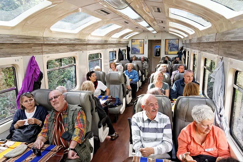 Interior del tren Vistadome