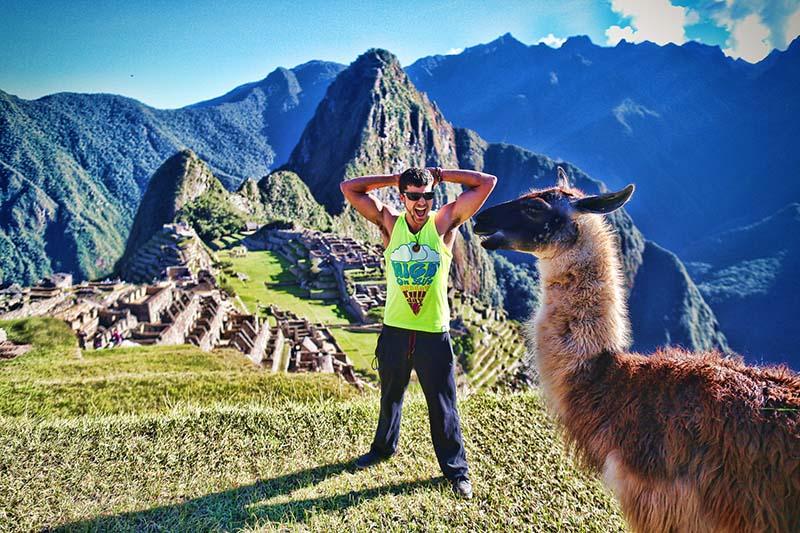 Fotografía de una llama en Machu Picchu