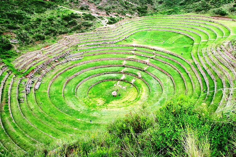 Terraces in Moray
