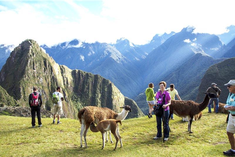 Turistas disfrutando de la maravillosa ciudad inca de Machu Picchu