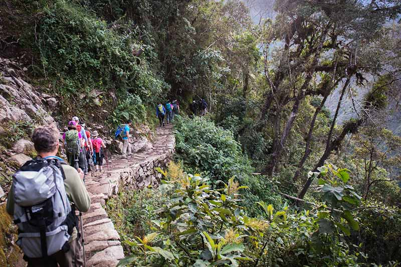 Viajeros recorriendo el camino inca