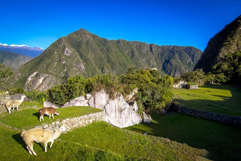 Cielo celeste en Machu Picchu durante la estación seca