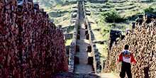 ¿Cómo visitar Piquillacta en el Valle Sur del Cusco?