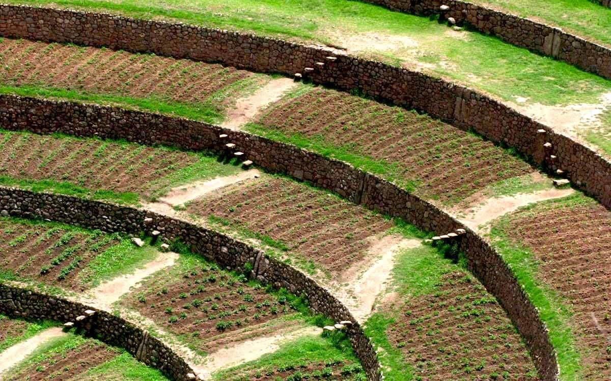 Campos de sembreio Moray