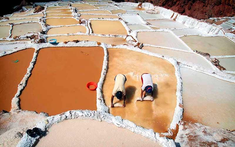 Trabajadortes Salineras de Maras