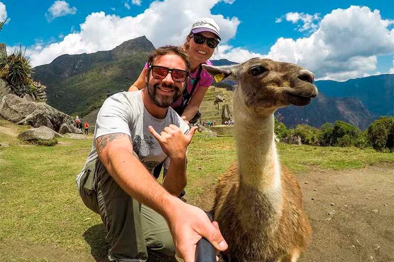Turistas con una llama en Machu Picchu