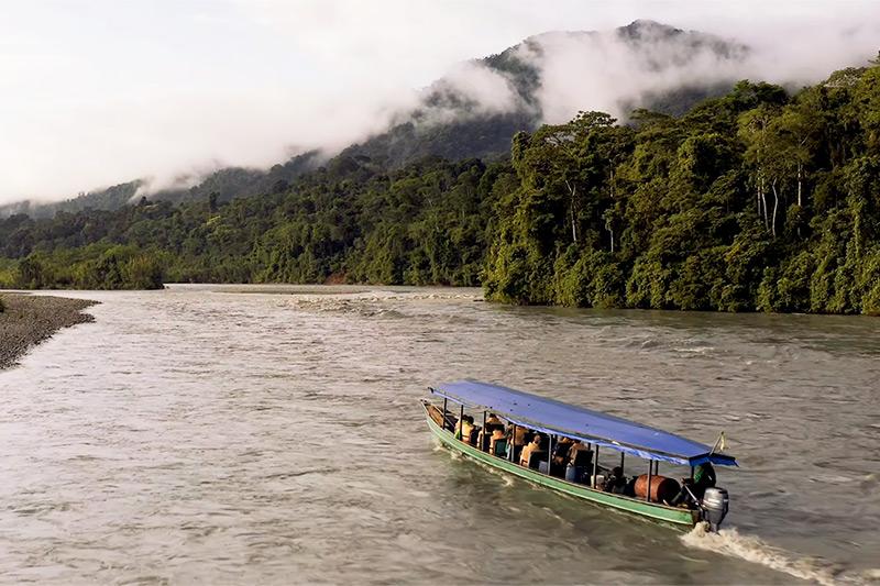 Manu - Perú